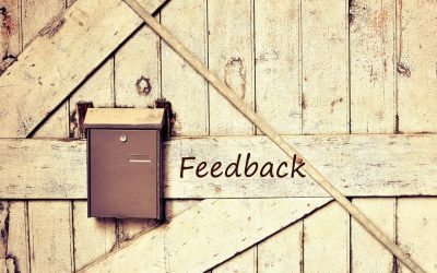 How to Use Surveys to Get to Know Your Audience Intimately